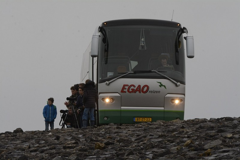 Excursie Zeeland, Brouwersdam, feb. 20. Foto Dirk-Jan Verboom